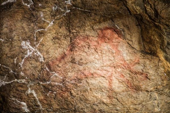 Ученые приедут в пещеру в декабре, чтобы найти новые рисунки