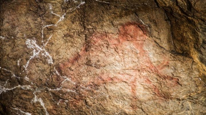 Ученые МГУ нашли в пещере Шульган-Таш изображение верблюда