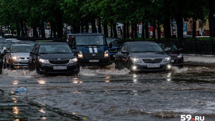 Сильные дожди и ветер. МЧС Прикамья предупреждает об опасности