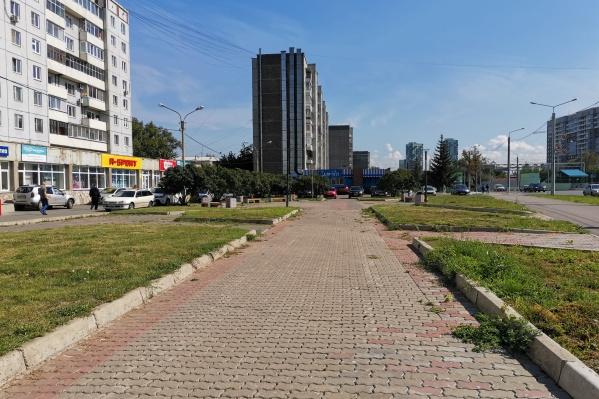 Сквер Сиреневый на Копылова попал в список возможных мест для благоустройства