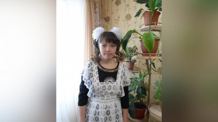 Нужны волонтеры: в Прикамье вновь выйдут на поиски девушки и ее друга, заблудившихся в лесу