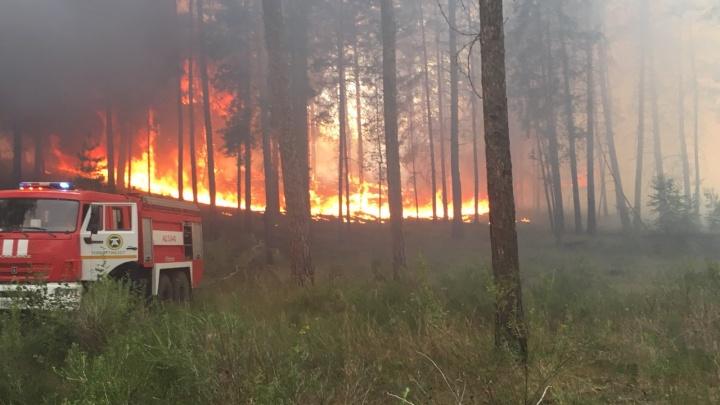 Пожарные больше 7 часов тушили траву около «Тольяттиазота»