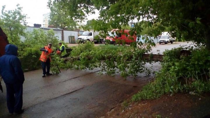 Городские власти устраняют последствия штормового ветра в Уфе