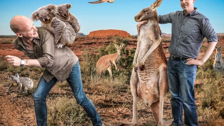 «Сбили кенгуру на пути в аэропорт»: путешественник рассказал о своих приключениях в Австралии