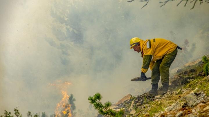 Пропавший при тушении лесов на севере края пожарный нашелся живым
