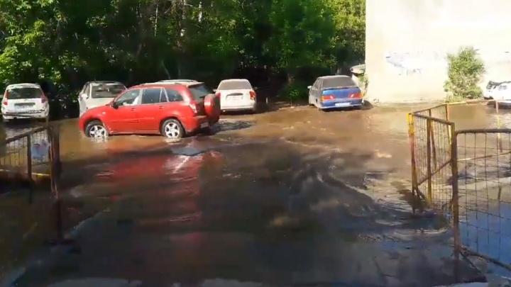 Айда купаться: из-за коммунальной аварии на проспекте Кирова разлилось целое море