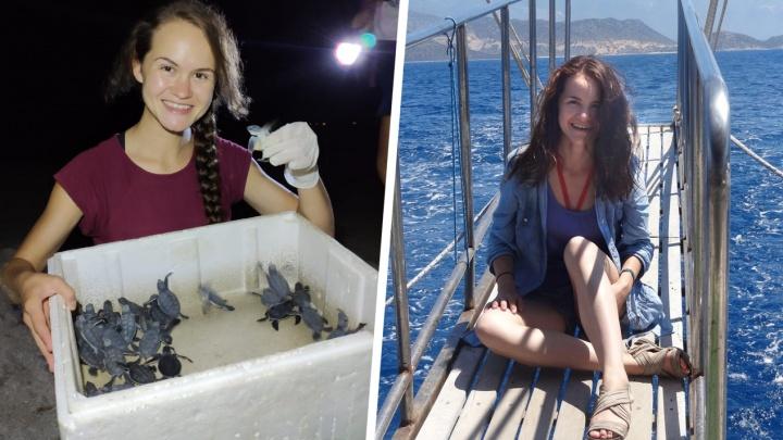 Работа мечты: сибирячка выиграла конкурс и уехала в Турцию спасатьчерепах