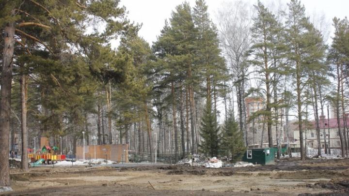 Прокуратура потребовала убрать бассейны, ради которых в «Сосновом бору» рубили деревья