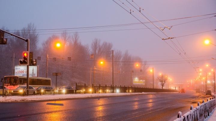 В Ярославле предложили отключать на ночь освещение в парках и скверах