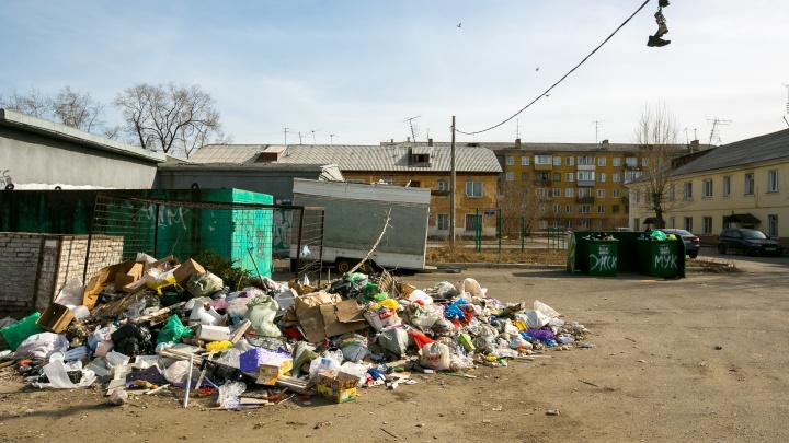 Министр предрек красноярцам рост цен на вывоз мусора из дворов
