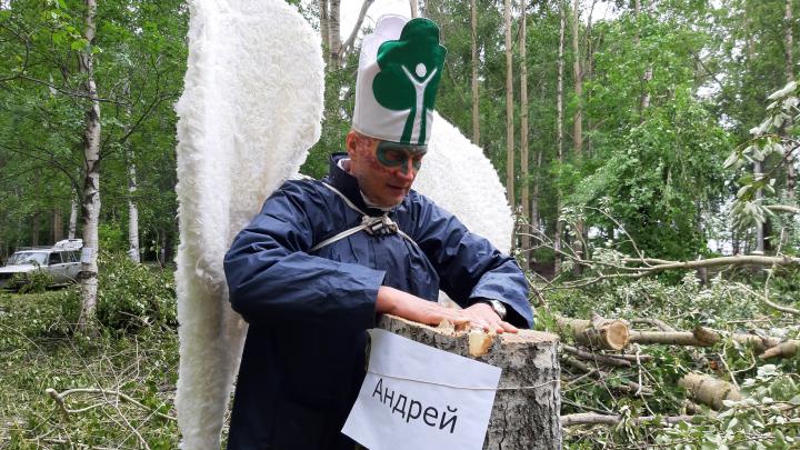 Пока пилили Андрея: Игорь Годзиш прокомментировал ситуацию с вырубкой деревьев в парке на Галушина
