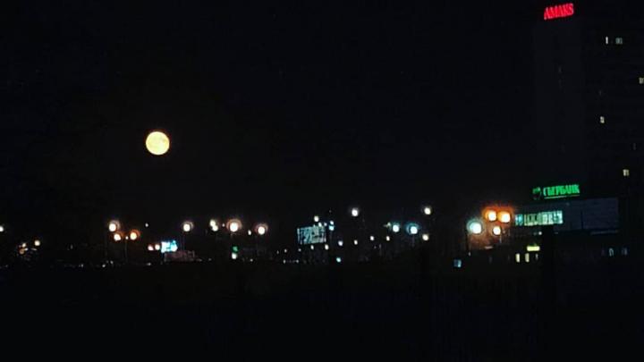 Крупная желтая луна появилась в небе над Красноярском