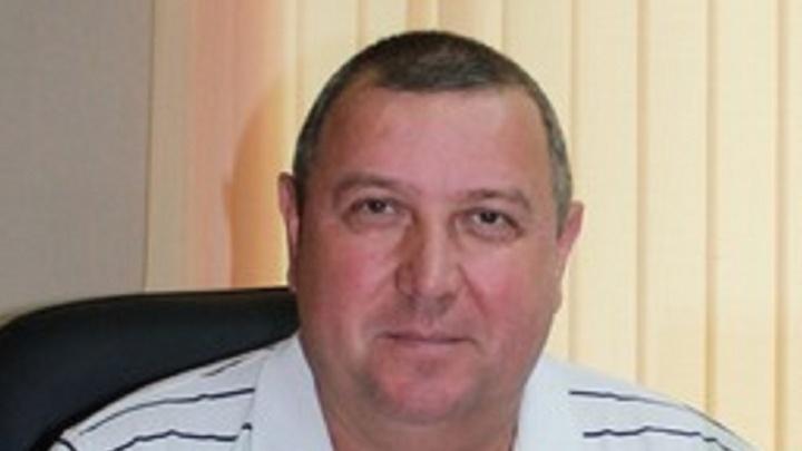 Директор уволен, подчиненных ждет полиция: «Горэколес» попался на сговоре с «черными лесорубами»