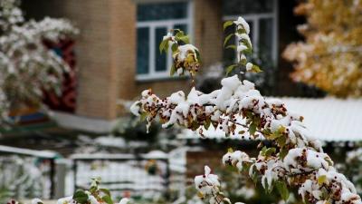 Дождь со снегом, гололедица: синоптики пообещали непогоду в начале недели