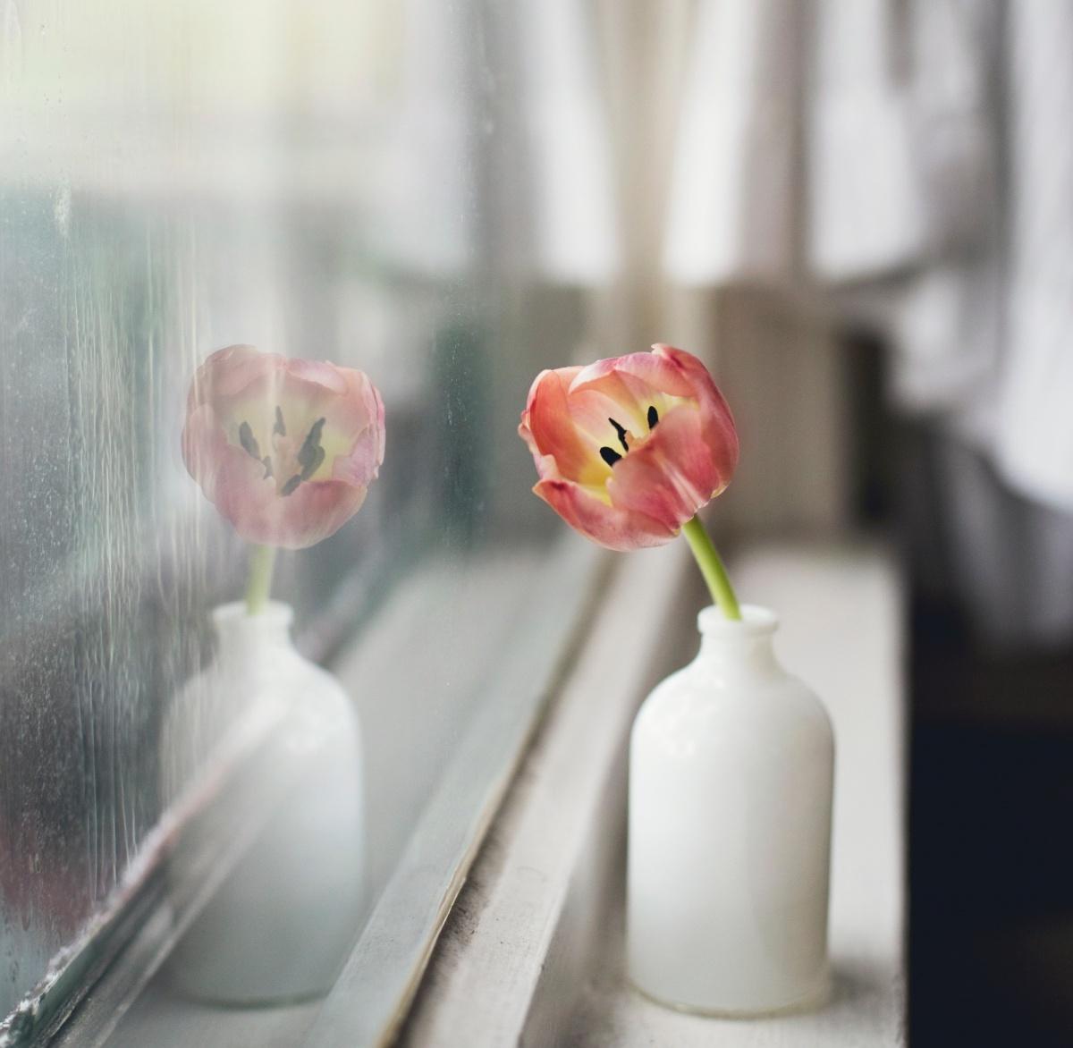 Как правильно выбрать пластиковые окна в квартиру?