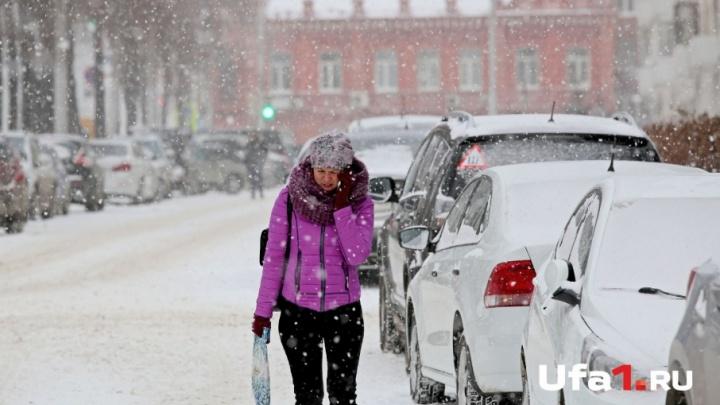 Мокрый снег и штормовой ветер: на Башкирию надвигается метель