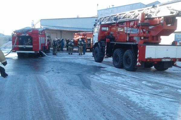 На месте несколько пожарных машин