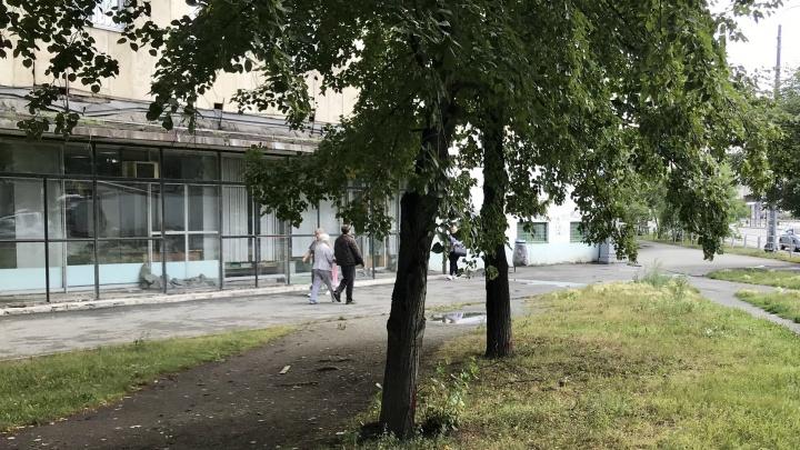 «Наркомания и вредительство»: в челябинском сквере ради благоустройства срубят три десятка деревьев