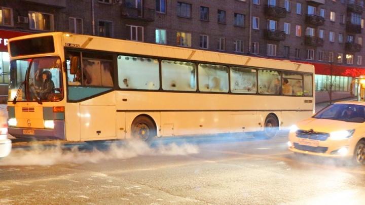 «Придёт через 50 минут»: проверяем, как ходят автобусы в новогодние праздники