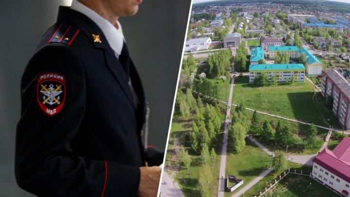 Следователи проверят информацию о жестокой драке школьниц в Боровском