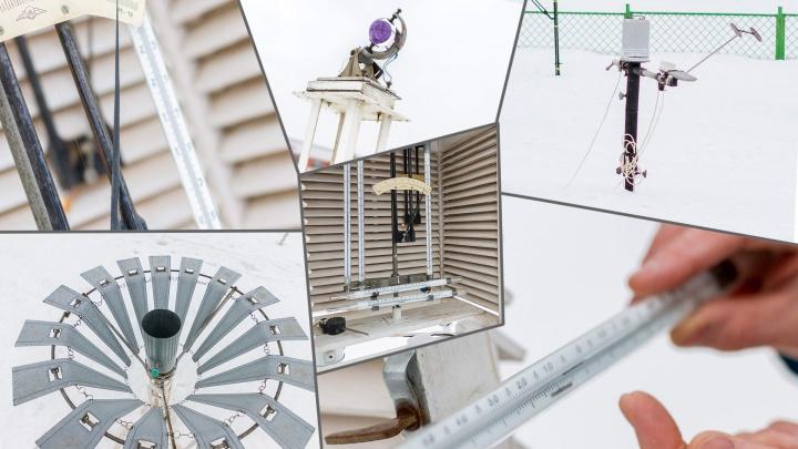 «Откуда ветер дует»: самарские синоптики рассказали, как делают прогнозы