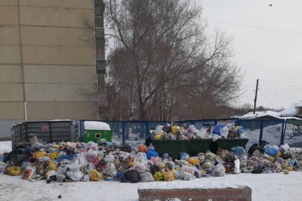 В спальных районах ситуация с вывозом мусора обстоит особенно тяжело