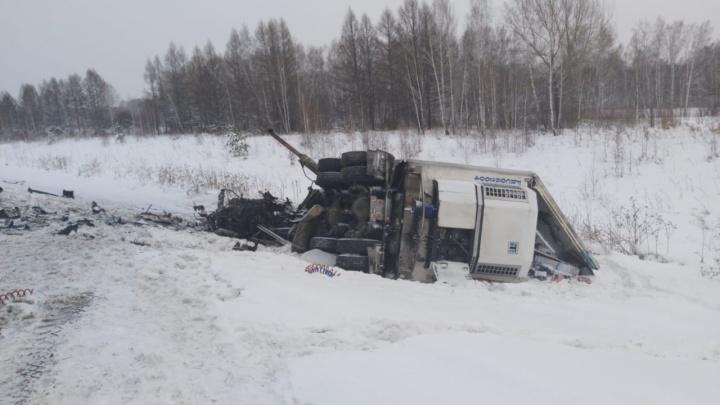 На новосибирской трассе вспыхнул грузовик — его водитель погиб