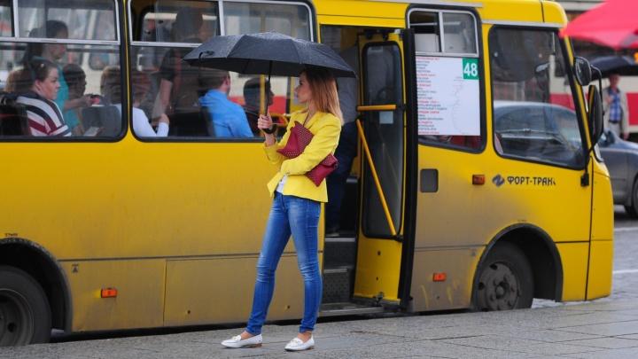 """""""Где толпы разъярённых горожан?"""": екатеринбуржцы обсуждают в соцсетях транспортный коллапс"""