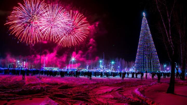 Самую высокую ёлку в стране под Новый год поставят в Красноярске