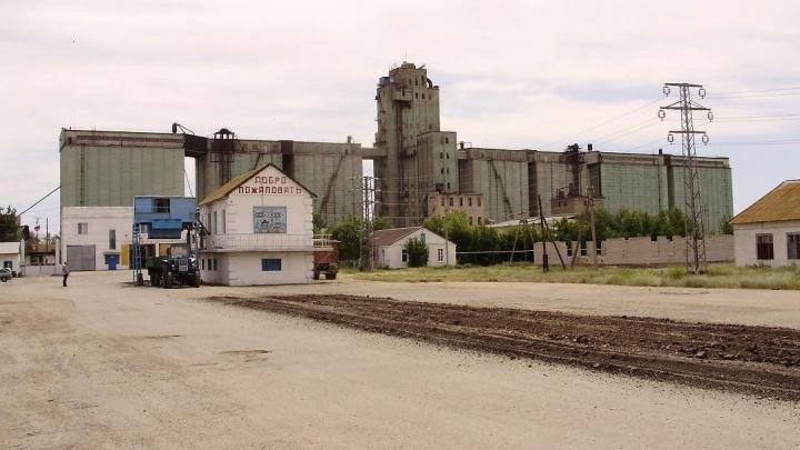«10 500 тонн исчезли»: волгоградский элеватор не вернул ростовчанам пшеницу на 108 миллионов рублей