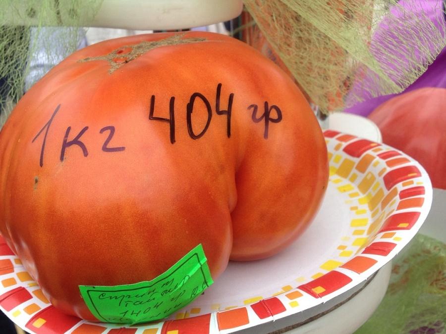 Гражданин Красноярского края получил «Ниву» за огромный помидор