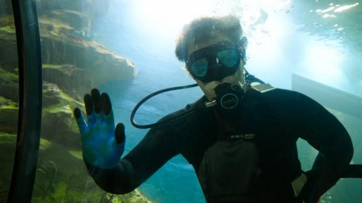 Последние майские выходные: ночуем в океанариуме и гоняем на дрифт-такси