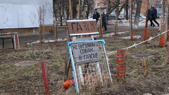 Нижегородским собачникам отдадут парк Пушкина и «Дубки»