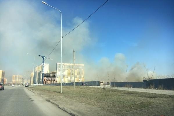 Трава горит не только в лесах, но и в самом Челябинске — рядом с жилыми домами