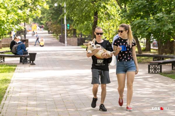 Пока в Ростове комфортная температура, можно позволить себе долгие прогулки