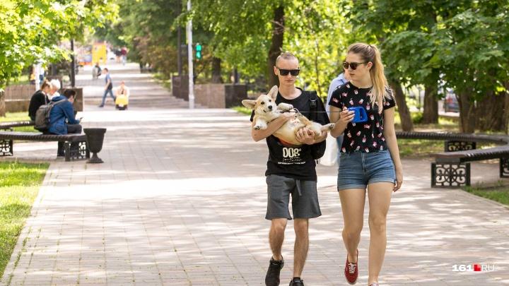 Что такое осень в Ростове: прогноз от синоптиков с 9 по 13 сентября