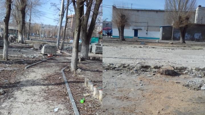 «Люди просто не знают, что внутри»: эксперты назвали причины вырубки любимого парка юга Волгограда