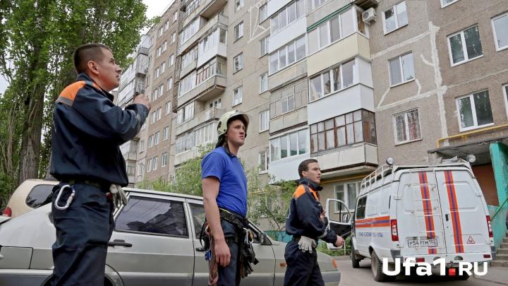 Три часа гонял летучую мышь по квартире: уфимские спасатели отловили рукокрылого