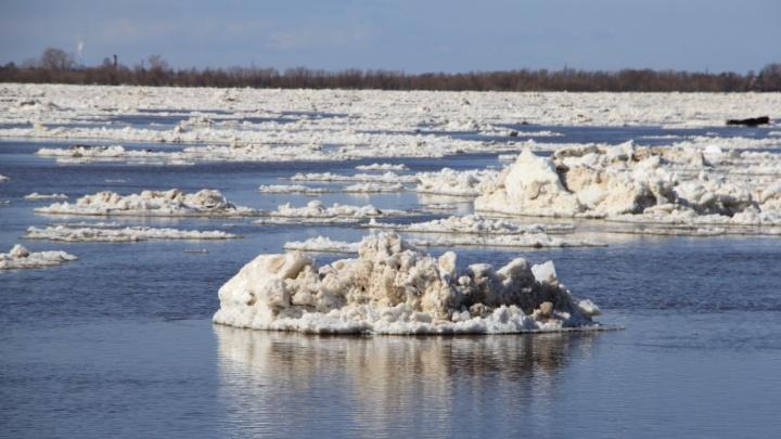 Это ещё не конец: от льда освобождается река Пинега