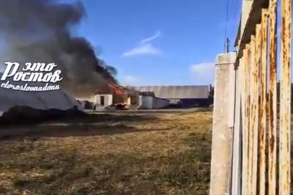 По словам очевидцев, школа горит уже в третий раз