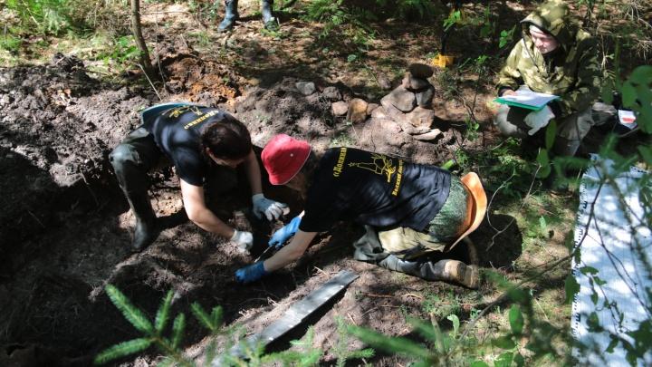 Ищут родственников: под Новгородом нашли останки новосибирских солдат