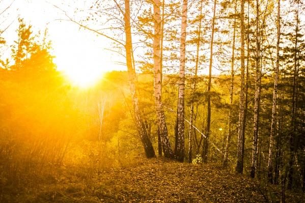 В Горно-Алтайске и Барнауле вчера оказалось ещё теплее, чем в Новосибирске