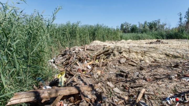 Компанию, смывшую в реку дома в Волгоградской области, оштрафовали на 240 тысяч рублей