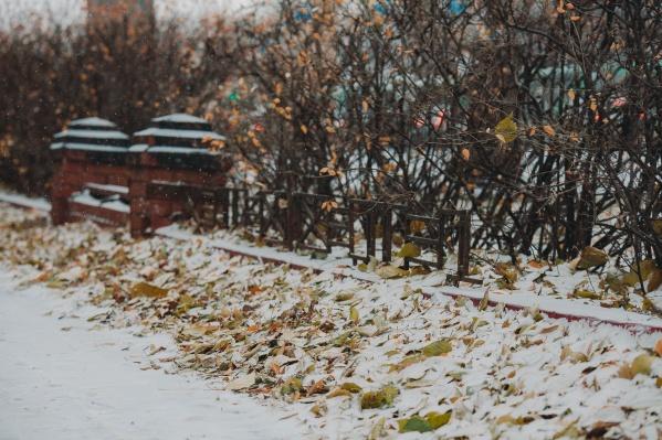 Обильный снег, по данным синоптиков, должен выпасть на этой неделе