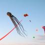 Взмоют в небо: в Самаре пройдет фестиваль воздушных змеев