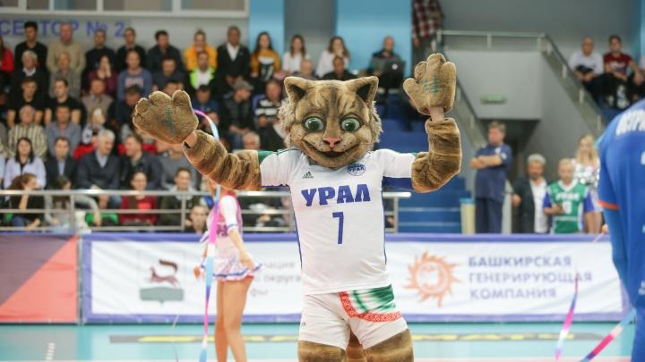Чемпион мира, самый эпатажный волейболист, новый стадион: в клубе рассказали о перспективах «Урала»