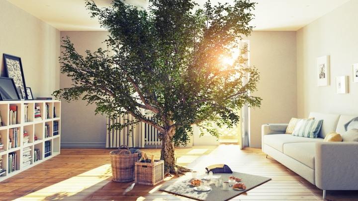Новосибирцам рассказали, как сочетать дерево и камень в отделке интерьера