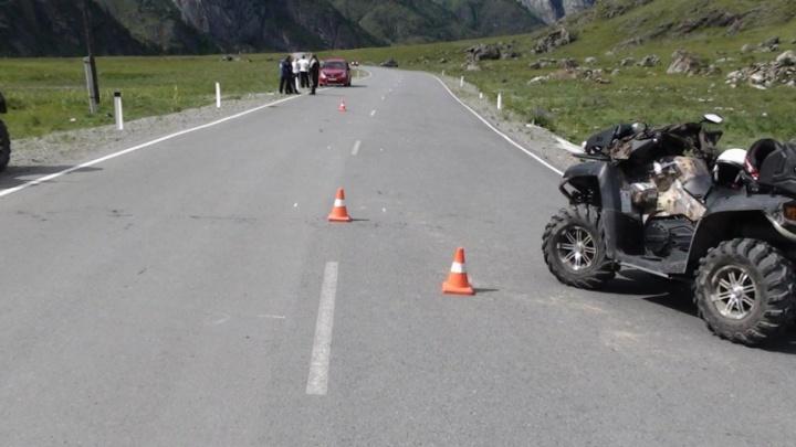 Двое новосибирцев перевернулись на квадроцикле из-за овцы на дороге в Горном Алтае
