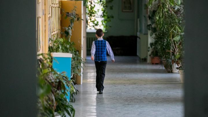 Мошенники пытаются развести на деньги благотворительные фонды Красноярска под предлогом 1 сентября