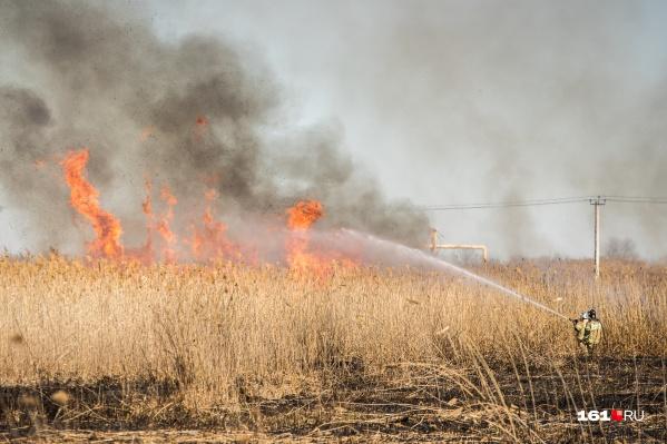 Не только засушливый климат, но и безответственность людей, могут стать причиной возгорания